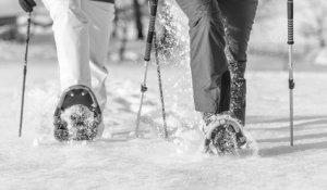 Schneeschuhwandern 13.1